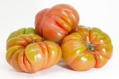 红色蕃茄 图库摄影