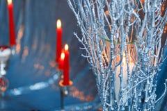 红色蜡烛在冬天分支的烧伤 免版税库存图片