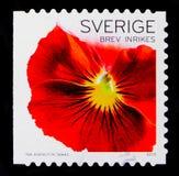 红色蝴蝶花,植物群开花-一般serie,大约2010年 免版税库存照片