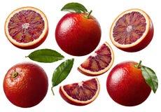 红色血橙切片在白色背景设置了被隔绝 免版税库存照片
