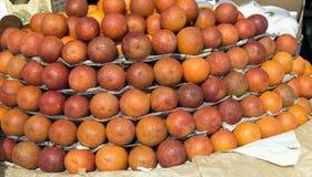 红色血橙 免版税库存照片