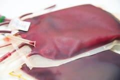 红色血液袋子 库存照片