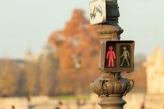红色行人交通光在巴黎 免版税库存图片