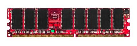 红色被隔绝的RAM 库存图片