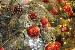 红色装饰品球和树 免版税库存照片