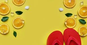 红色触发器桔子在叫喊留下柑橘冰海壳柑橘 库存图片