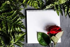 红色说谎在灰色具体backgroung的玫瑰和绿色叶子 平的位置 顶视图 免版税库存照片
