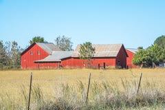 红色谷仓在门诺派中的严紧派的国家 库存图片