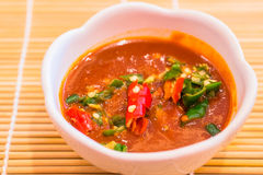 红色辣椒和蒜酱油 库存照片