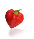 红色辣椒的果实爱 库存图片
