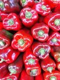红色辣椒的果实 免版税库存照片