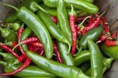 红色辣椒的青椒 免版税库存图片