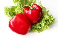 红色辣椒粉和莴苣 库存图片