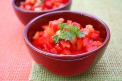 红色辣椒粉新鲜的沙拉  库存照片