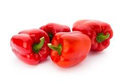 红色辣椒粉,菜 免版税库存照片