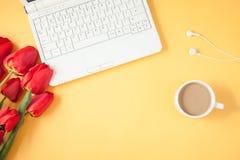 红色郁金香、膝上型计算机和咖啡在黄色背景反弹,夏天概念舱内甲板被放置的顶视图 免版税库存图片