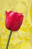 红色郁金香多角形传染媒介 免版税库存图片