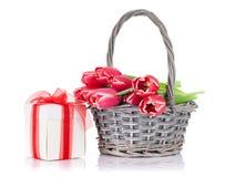 红色郁金香开花花束和礼物盒 免版税库存图片
