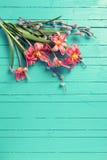 红色郁金香开花,在绿色被绘的木pl的杨柳分支 库存图片