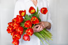 红色郁金香美丽的花束在女孩的手上 免版税图库摄影