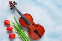 红色郁金香老小提琴和花束  情人节,3月8日概念 顶视图,在天空蔚蓝具体背景的特写镜头 免版税库存照片