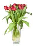 红色郁金香花束在一个玻璃花瓶的 免版税库存图片