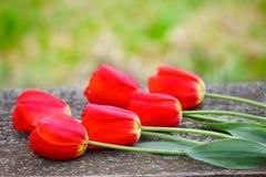 红色郁金香花束在木桌上的在庭院里 库存图片