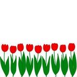 红色郁金香 也corel凹道例证向量 免版税库存图片
