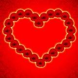 红色重点由玫瑰做 免版税库存图片