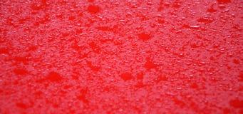 红色金属表面上的Waterdrops 库存照片