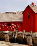 红色钓鱼的棚子在港口 免版税库存照片