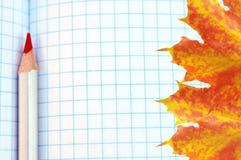 红色铅笔和明亮的枫叶在图表方格纸 免版税库存照片