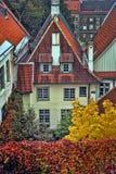 红色铺磁砖的屋顶和秋天叶子 库存图片