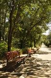 红色长凳在公园 免版税库存照片