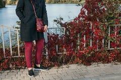 红色长裤和植物红色叶子  库存照片