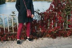 红色长裤和植物红色叶子  库存图片