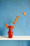 红色陶瓷花瓶用干果壳蕃茄 免版税库存照片