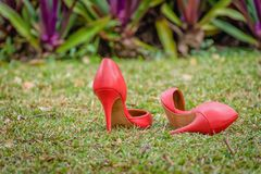 红色障碍物鞋子在绿色庭院里 免版税库存照片