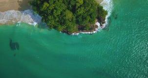 红色青蛙海滩空中寄生虫视图在Bocas del托罗,加勒比,巴拿马的 股票视频