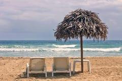 红色青蛙海滩, Bocas del托罗,巴拿马 免版税图库摄影