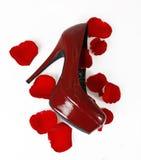 红色鞋子和玫瑰花瓣 免版税库存图片