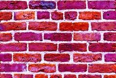 洋红色颜色砖墙纹理背景 免版税库存照片