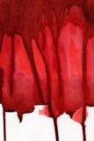 红色飞溅 库存照片