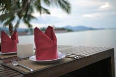 红色餐巾用食物设备 免版税库存图片
