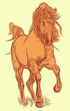 红色马 免版税库存照片