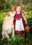红色骑马兜帽和狼 库存图片