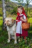 红色骑马兜帽和狼 免版税库存照片