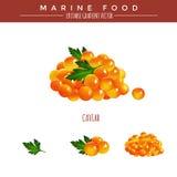 红色鱼子酱 海洋食物 免版税库存照片