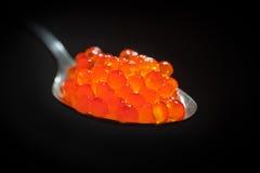 红色鱼子酱 免版税图库摄影
