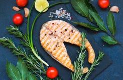 红色鱼鲑鱼排顶视图  库存图片